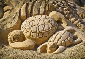 schildkroeten aus sand